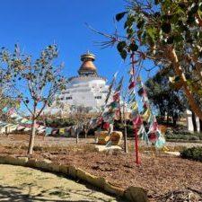 Stupa Flags